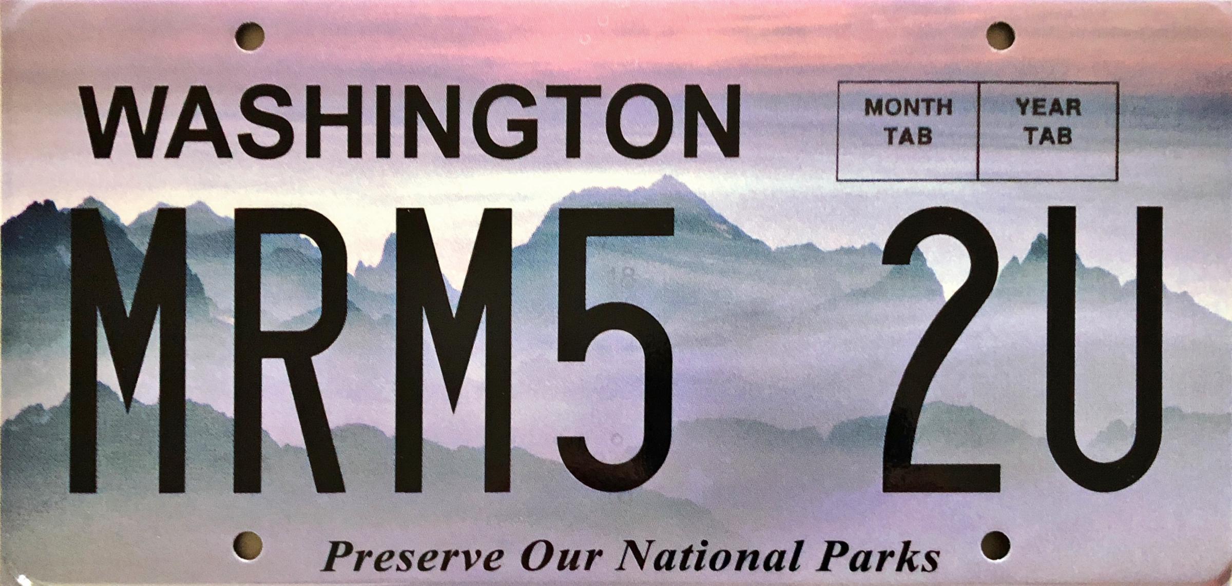 Name:  License plate.jpg Views: 704 Size:  350.9 KB