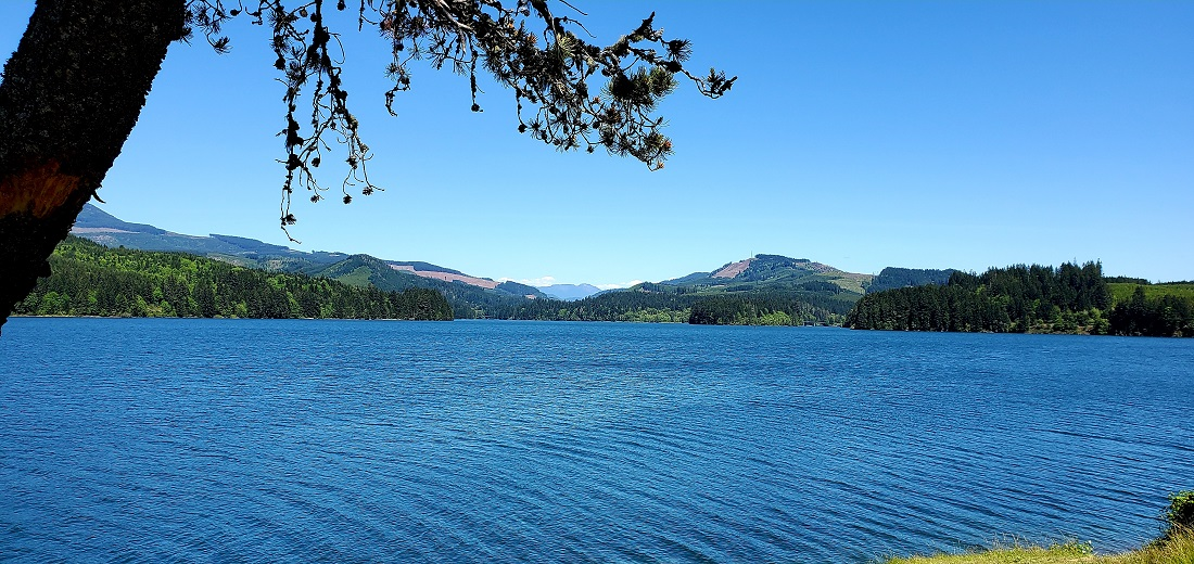Name:  Foster Reservoir.jpg Views: 4002 Size:  290.8 KB