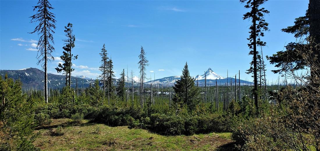 Name:  Mt Washington 1.jpg Views: 3926 Size:  359.6 KB