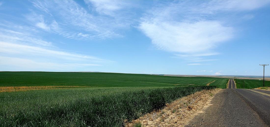 Name:  Farm.jpg Views: 3759 Size:  212.1 KB