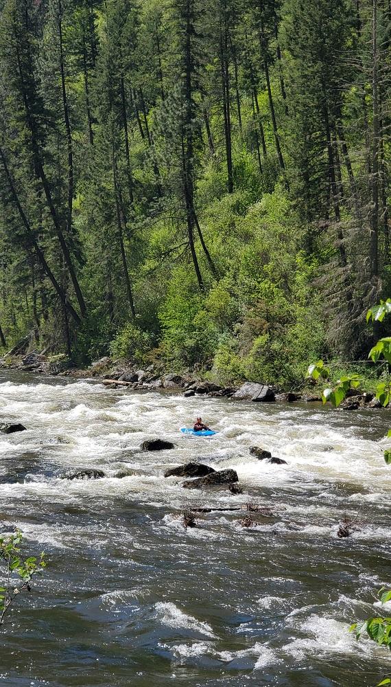 Name:  Kayaker.jpg Views: 3390 Size:  408.4 KB
