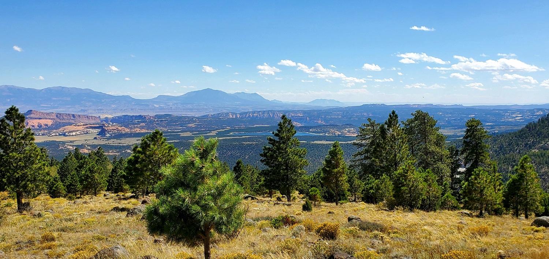 Name:  Larb Hollow Overlook.jpg Views: 10237 Size:  536.3 KB